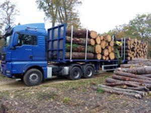 Semi forestière
